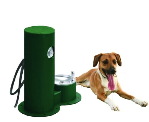 Cool Dog Waterfountain Drink, Wash, Cool - Green (With Dog)