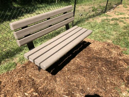 Trail Bench With Back